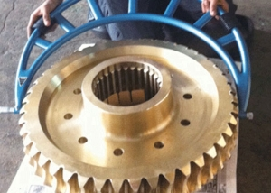 Large Worm Gear