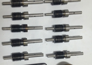 Worm Screw & Induction Hardening